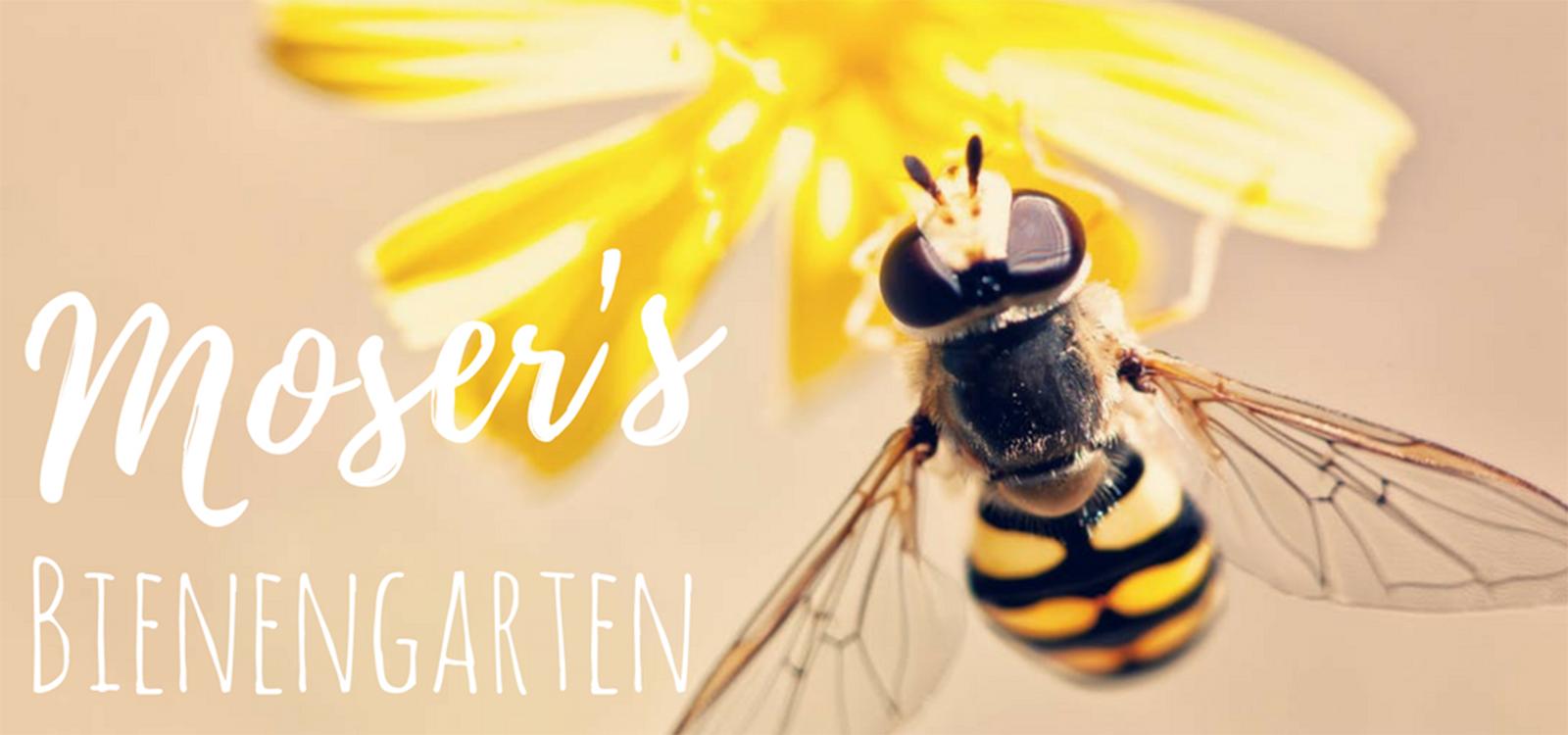 Moser's Bienengarten
